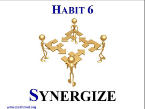 Covey's 6th Habit Synergize